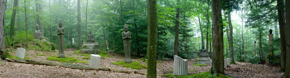 Visit Tranquility Gardens
