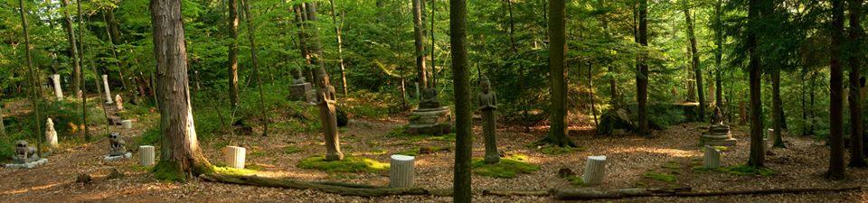 Tranquility Gardens Exhibit & Workshop