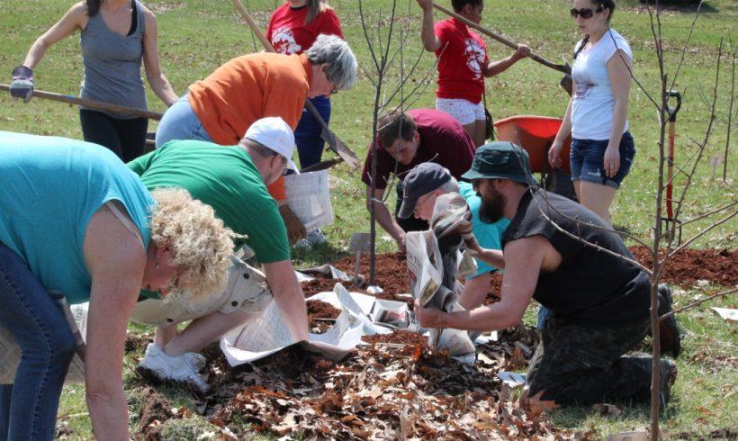 Garden Grows Community Spirit