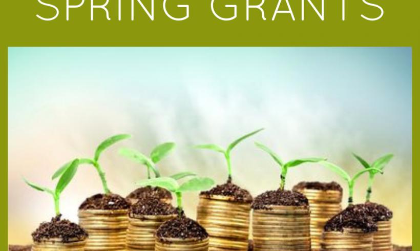 2019 Spring Grant Distribution