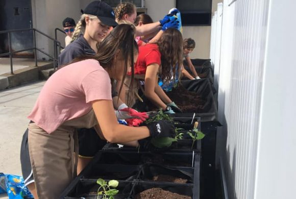 Therapeutic Gardening Project Kicks Off