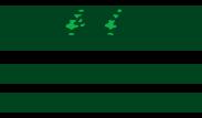 Old Westmont Neighbors supports neighborhood improvements and activities.