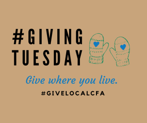 This Giving Tuesday, Community Foundation for the Alleghenies is promoting local nonprofits and grassroots organizations through a #givelocal campaign