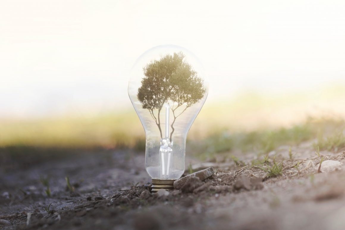 Sustainable Energy Fund Grants Awarded Locally