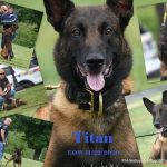 In Memory of Titan